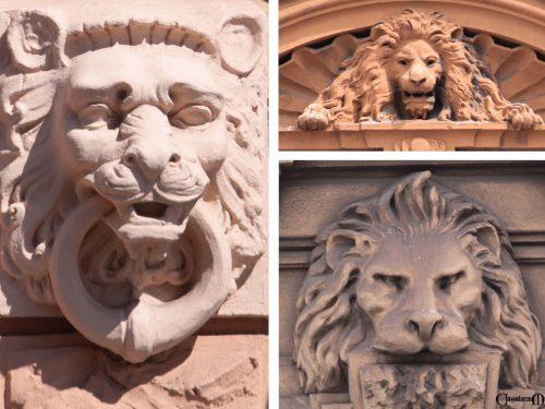 Il serraglio dei leoni di Nouma Hava
